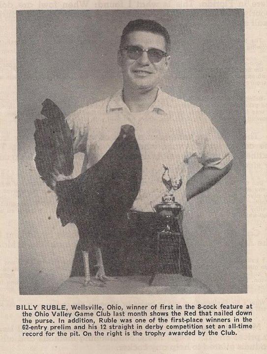 Bill Bumgarner gamefowl grey